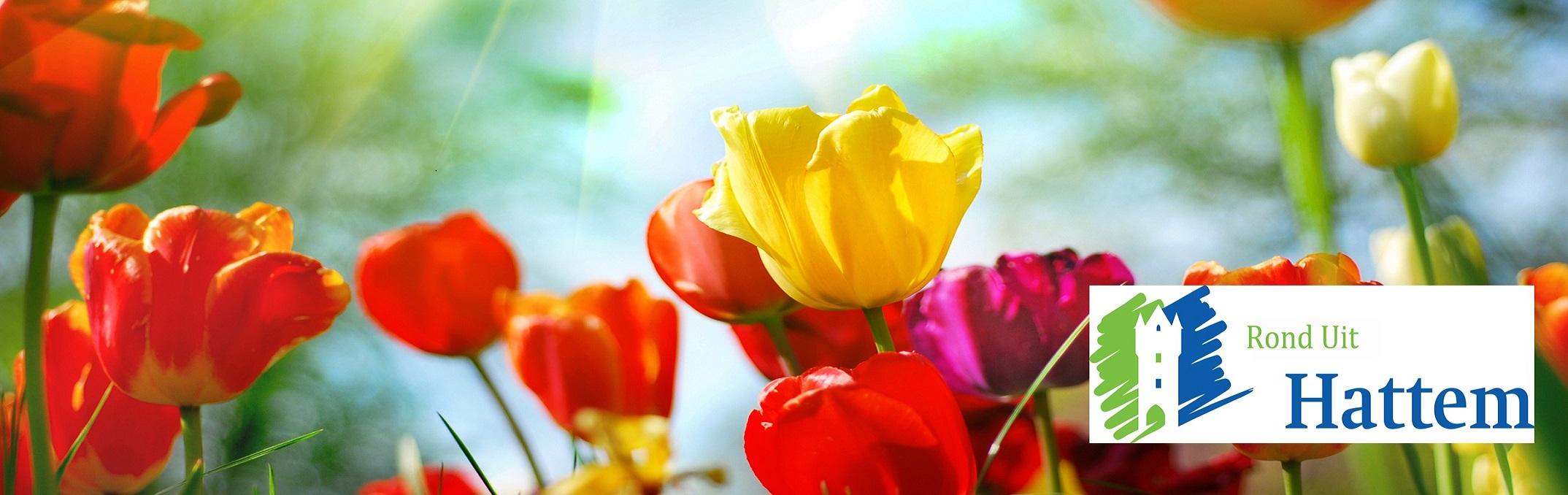 Primavera Lentemarkt Hattem
